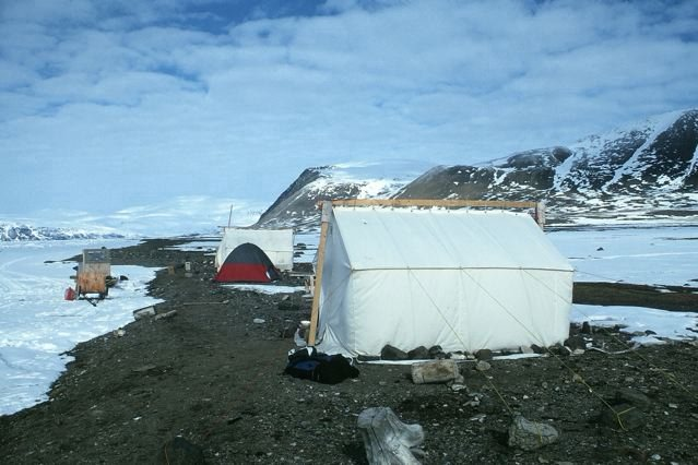 Seal hunting camp near Grise Fiord.